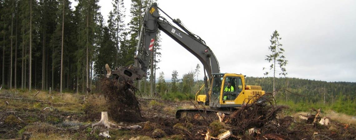 A forest machine on a clear-cut. Photo.